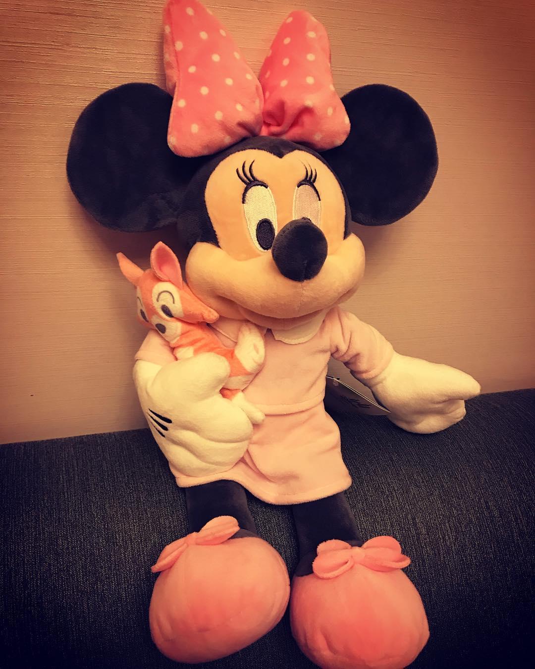 照片中,粉色裙子的minnie怀里抱着一只小狐狸,我们可爱的糖三岁还配