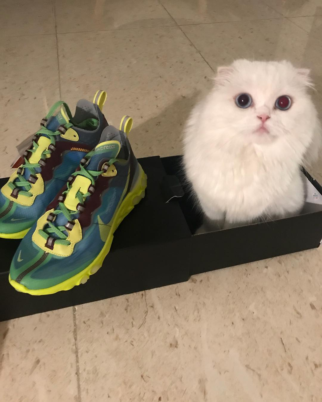 """[新闻]180919 新鞋子get 运动少女朴信惠看来要""""重出江湖""""了"""