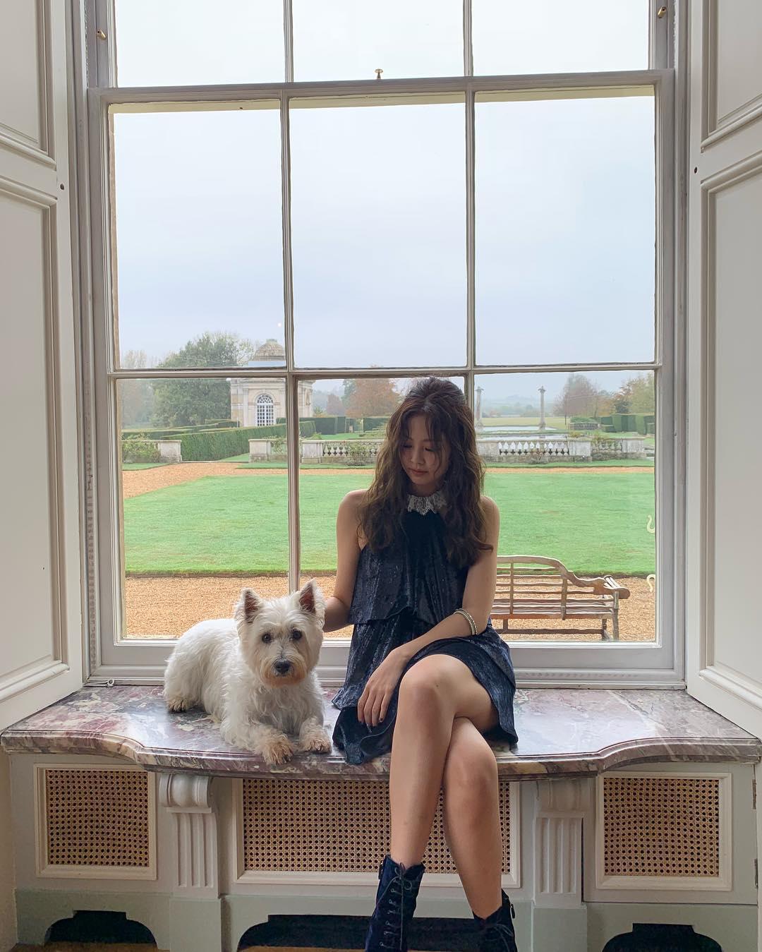 [分享]181113 爱狗人士的日常 JENNIE《SOLO》MV拍摄现场和狗狗互动敲有爱!